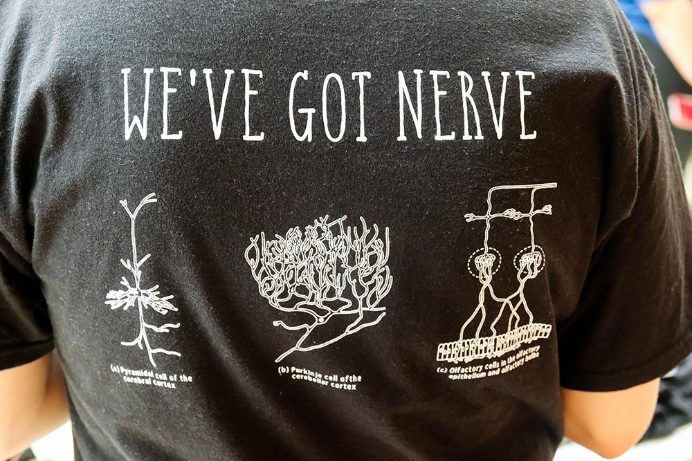 "Back view of a tee shirt that says ""We've Got Nerve"""
